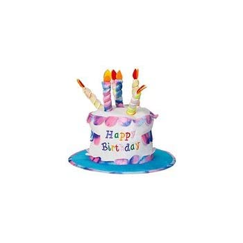 Groovy Adult Happy Birthday Cake Hat With Candles Fancy Dress Party Funny Birthday Cards Online Barepcheapnameinfo