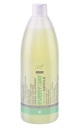 SPA Master profesional, Shampoo per uso quotidiano con tè Verde, ortica e pantenolo, 970ml