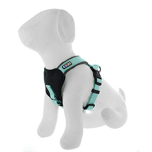 Pawtitas Padded Harness Puppy Harness Dog Harness Reflective Harness Behavioral Harness Training Harness Extra Small Harness Teal Harness