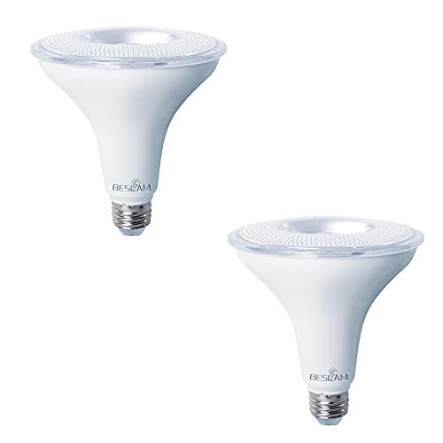 BESLAM PAP38 17W LED Flood Light Bulbs,...