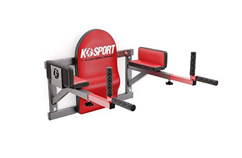 QLS Dip Barren Dipstation Dipper Bauchtrainer Fitnessgerät Wandmontage KSH005/SK