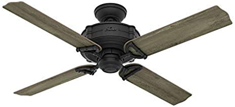 Hunter Indoor / Outdoor Ceiling Fan, with remote control - Brunswick 52 inch, Natural Iron, 54181