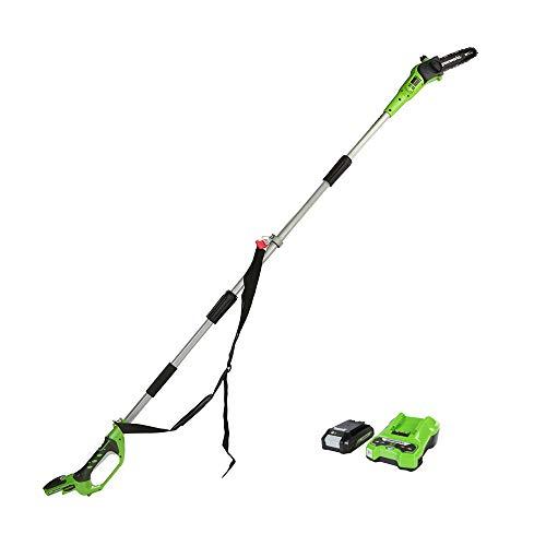 Greenworks Tools Sierra de polar de 24 V con batería de 24 V y 2 Ah y cargador.