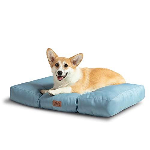 Bedsure Hundekissen für Kleine Hunde Wasserdicht 75 x 50 cm - Gepolstert Hundematte Hundebett Waschbar Outdoor Geeignet Blau