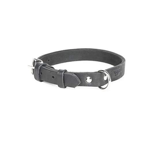 Julius-K9, 25060-S, Leather Collar, Riveted 2.5 x 60 cm