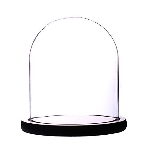 Artlass Glass Cloche Bell Jar Display Dome with Black Wooden Base 6' x 7'