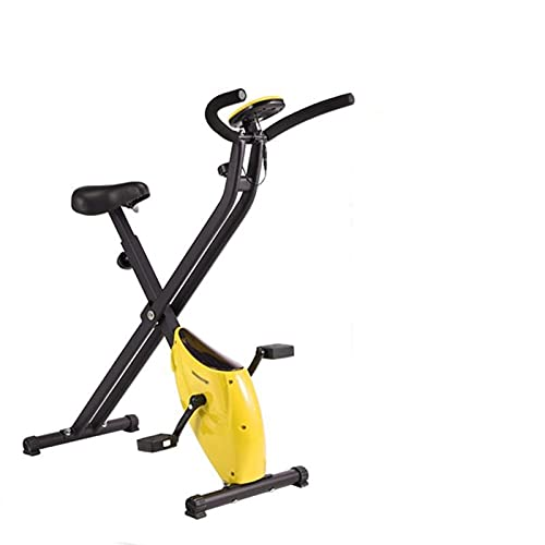 DJDLLZY Bicicletas de spinning bicicletas, ejercicio, cubierta Ciclismo Bicicleta estática, volante magnético, resistencia magnética, 3-Piece Crank, for el hogar cardio del gimnasio con un cómodo cojí