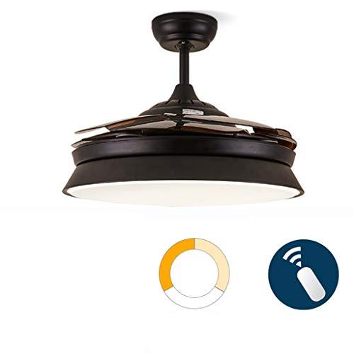Ventilateur de plafond ZHAOSHUNLI Lumière Restaurant Postmoderne Minimaliste Salon Chambre Etude Décoration Ventilateur Lumière LED Ventilateur Lustre (Color : Remote Control-Black, Size : Dimming)