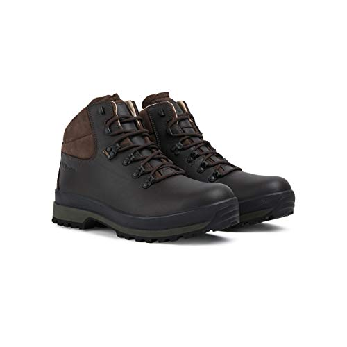 Berghaus Hillmaster II Gore-tex Walking Boots, Chaussures de Randonnée Hautes Homme, Marron (Coffee Brown Bj8), 45.5 EU