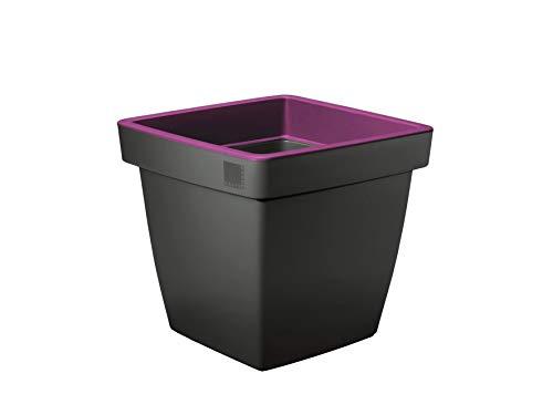 Blumentopf Blumenkübel Pflanztopf - Modell Venere aus Kunststoff - diverse Ausführungen (Eckig, Purple)