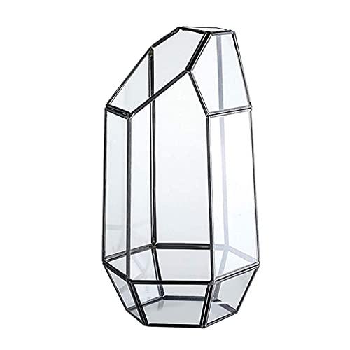 MISHITI Caja de terrario de Plantas de Aire geométricas de Vidrio Irregular de Mesa de Interior de 9.4 Pulgadas de Altura