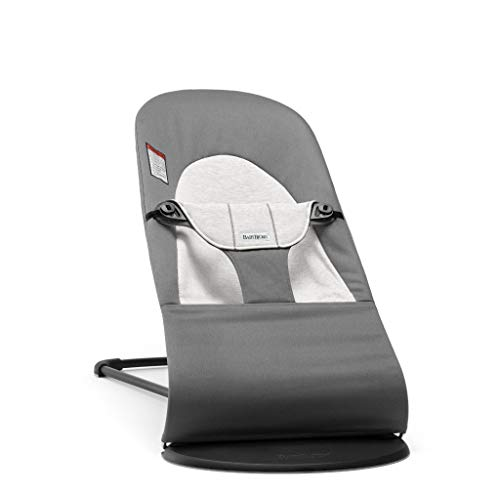 BabyBjorn Balance Soft Bouncer Product Image