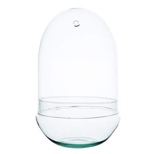 EcoGlas Glas-Terrarium für Pflanzen, Ø 18,5 cm, 30 cm hoch, Ø-Öffnung 1 cm, Gewicht 650 g, 2-teilig, eiförmig, optimal für einen Flaschengarten für zu Hause, Büro oder Schule