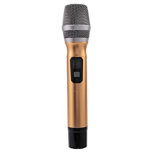Monland Professionelles UHF Funk Mikrofon Universal Mikrofon mit Variabler Frequenz für KTV Haus Karaoke Computer Lehr Mikrofon (USB Handheld)