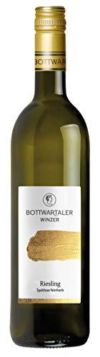 Württemberger Wein PREMIUM Riesling Spätlese feinherb (1 x 0.75 l)