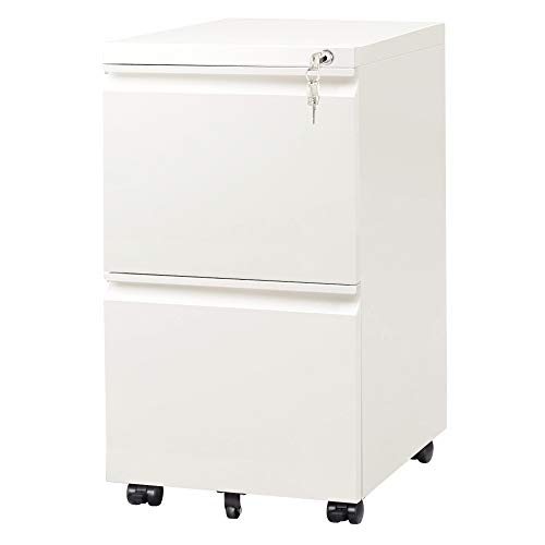 DEVAISE 2-Drawer Mobile File Cabinet with Lock Vertical Filing Cabinet White