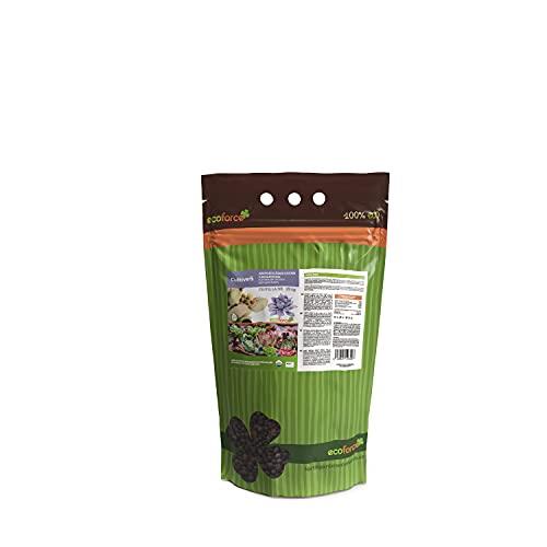 CULTIVERS Abono Especial Cactus Plantas Crasas y Suculentas de 1,5 Kg. Fertilizante...