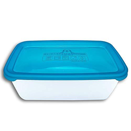 HEIDRUN Polar Frost Frischhaltedose 0,6-2,5L Kühlschrank Mikrowelle Gefrier Dose, Größe: 2500ml Türkis