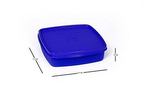 Signoraware Smart N Slim Plastic Lunch, Deep Violet