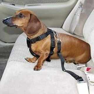 HDP Car Harness Dog Safety Seat Belt Gear Travel System