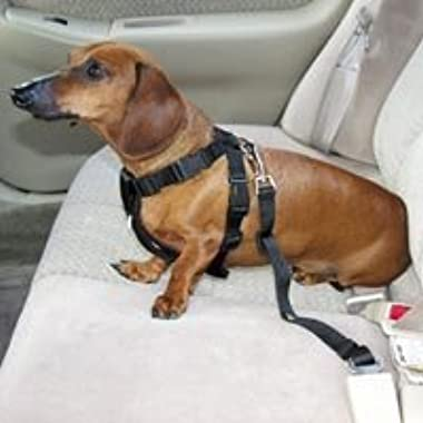 Amazon.com : HDP Car Harness Dog Safety Seat Belt Gear Travel System