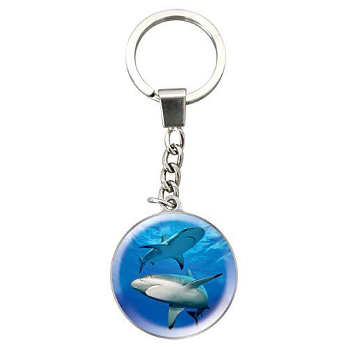 Deluxebase Magnidome Schlüsselanhänger - Haifisch Kristallglas Schlüsselring Charme. Gewölbter Haifisch Bildschlüsselring mit einer Edelstahlkette