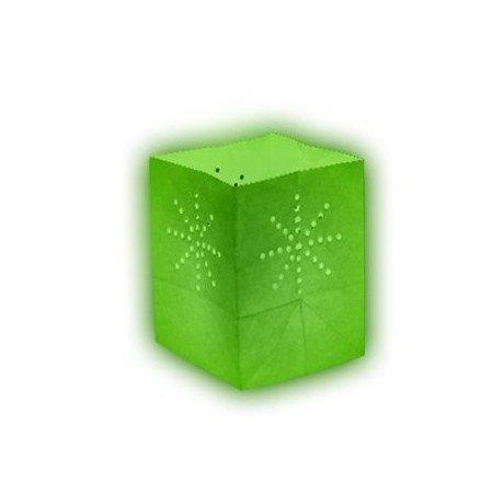 Lanterne papier medium vert anis (x10)