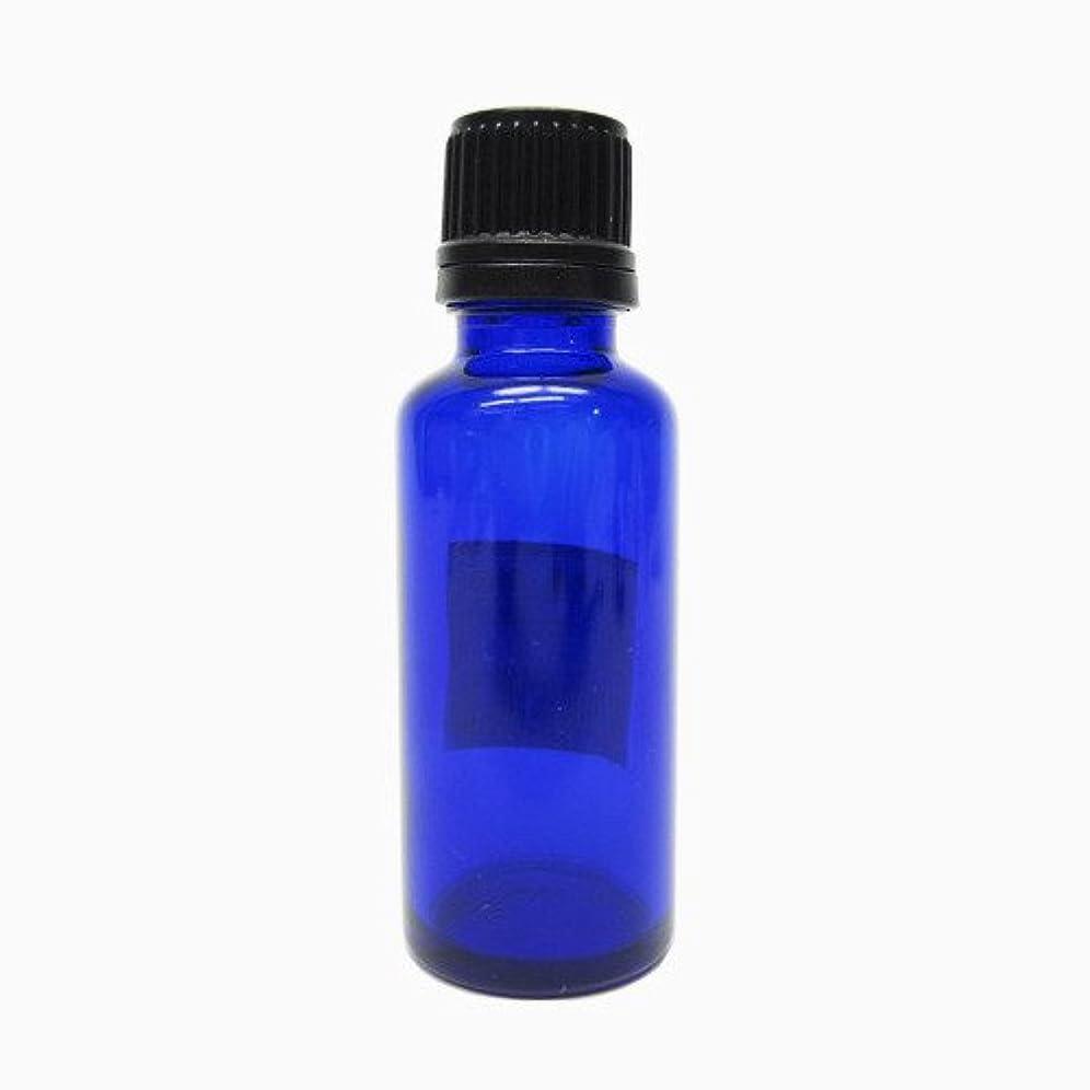 進捗検索エンジン最適化伸ばすカミオカ 青遮光瓶 30ml
