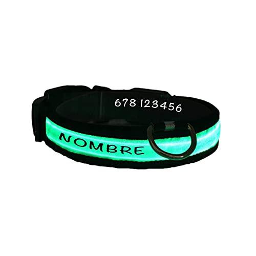 Collar Perro Personalizado con LED, Collar para Perro Luminoso y Personalizado con Nombre y teléfono, Tamaño Ajustable para Perros Pequeños Medianos Grandes (M, Verde con Nombre)