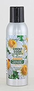 Paul Hoge Creations Smoke Odor Exterminator 7oz Large Spray, Picking Daisies