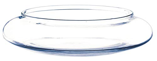 INNA-Glas Coupe décorative en Verre Chico, Transparent, 6cm, Ø 26cm - Centre de Table en Verre - Coupelle Ronde