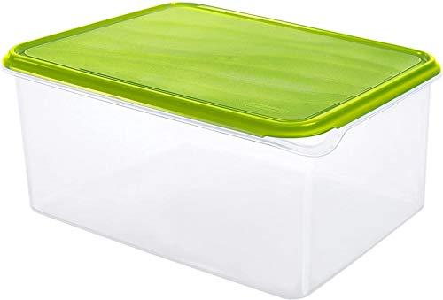 Rotho Rondo Frischhaltedose 8 l, Kunststoff (BPA-frei), grün / transparent, 8 Liter (31,5 x 24 x 14,5 cm)