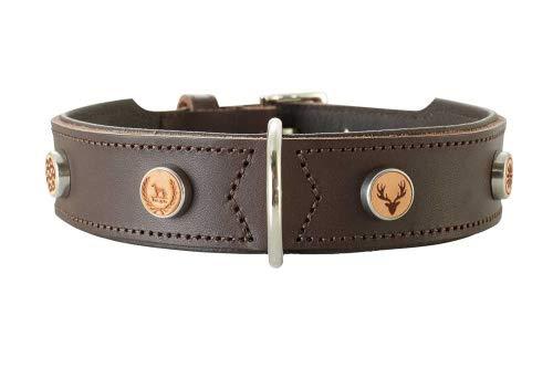HUNTER YUMA Hundehalsband, Leder, individuell, personalisierbar, weich, 50 (S-M), braun