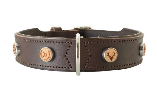 HUNTER YUMA Hundehalsband, Leder, individuell, personalisierbar, weich, 55 (M), braun