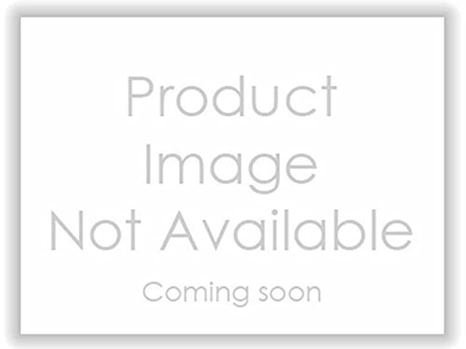 Sealed Power 222366GP Timing Chain Guide