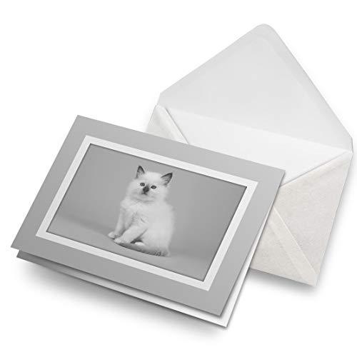 Fantastico biglietto di auguri grigio (inserto) BW – bianco cucciolo Ragdoll gattino gatto bianco bianco biglietto di auguri compleanno bambini festa ragazzi ragazze #42516