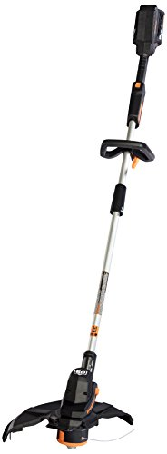 Check Out This LawnMaster CLGT6014A Grass 60V Cordless Trimmer