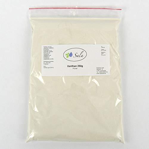 Sala Xanthan Gum Pulver E415 konv. 250 g