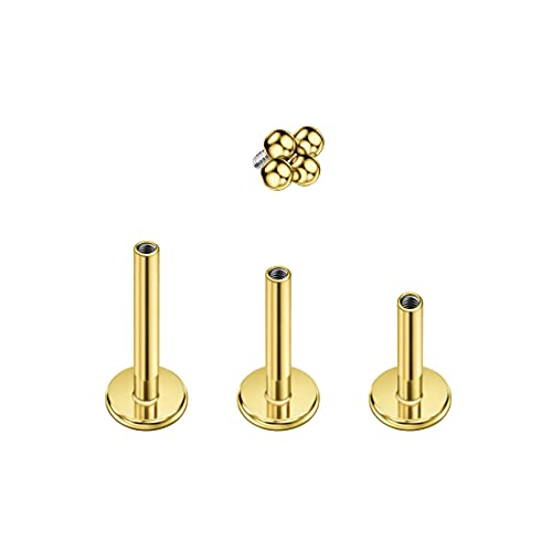 FANSING Tragus Piercing Jewelry Surgical Steel Earrings Gold Cartilage Earring Stud Conch Piercing Jewelry Helix Stud for Women Dainty Ball End with 16g 6mm 8mm 10mm Internally Threaded Labret Post