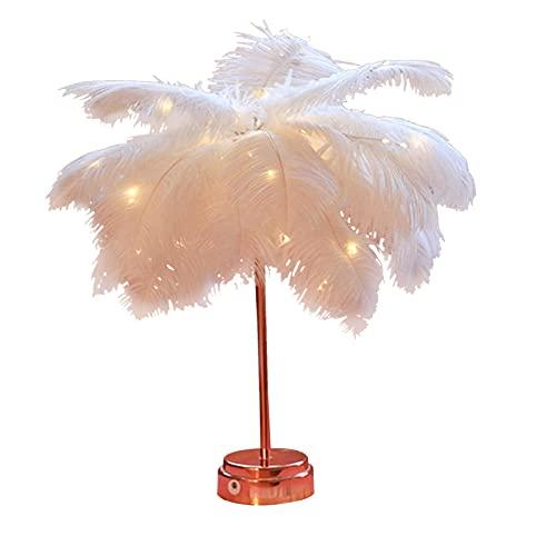 ANAJOY Lámpara de escritorio LED con pantalla de plumas, varios modos de alimentación con cable USB, color blanco