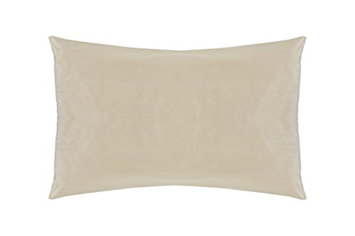 Sleep & Beyond 20 by 36-Inch Washable Wool Pillow, King, Natural