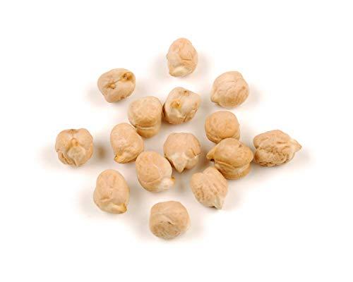 HONIC Garbanzo Bean (Kichererbse) 50 Samen Samen pk