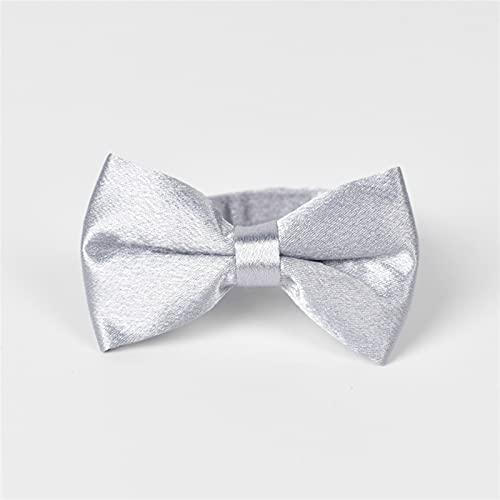 YSJJLRV Correa Collar de Animal doméstico de Perro de Corbata Ajustable con Collares de Perro Gatito (Color : Silver, Size : M 21-42CM)
