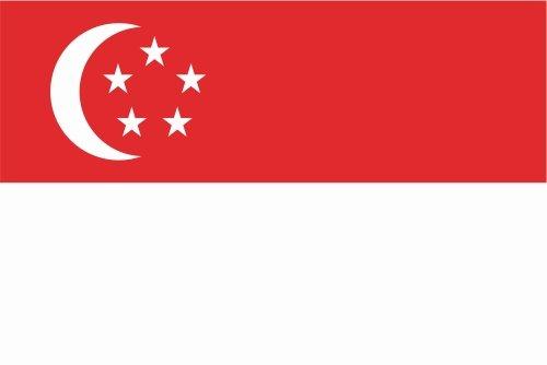 Kiwistar Autoaufkleber Sticker Fahne Flagge Aufkleber 10cm Singapur laminiert sehr Lange Haltbar