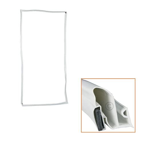 DL-pro Junta de goma universal para puerta, 200 x 100 cm, junta magnética, para fijar en nevera y congelador
