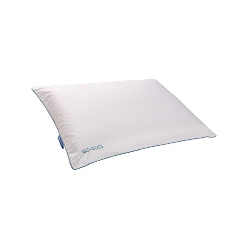 Isotonic Iso-Cool Memory Foam Traditional Pillow