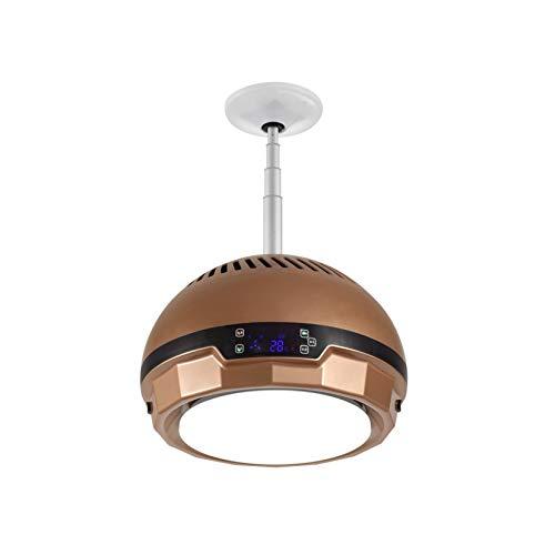 Purificador De Aire Doméstico: Candelabro Elevable, Luz Led De Tres Tonos, con Pantalla Táctil Digital, para Sala De Estar/Dormitorio/Cocina/Ajedrez Y Sala De Cartas/Bar, Etc.