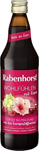 Rabenhorst Wohlfühlen mit Eisen, 6er Pack (6 x 700 ml)