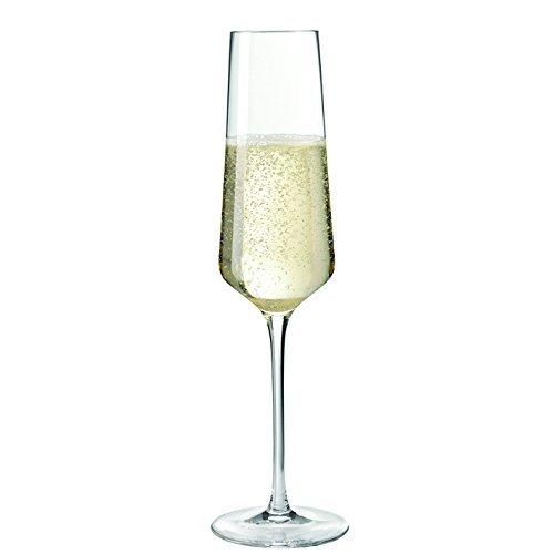 LEONARDO 069550 Sektglas/Sektflöte/Proseccoglas - PUCCINI - 280 ml