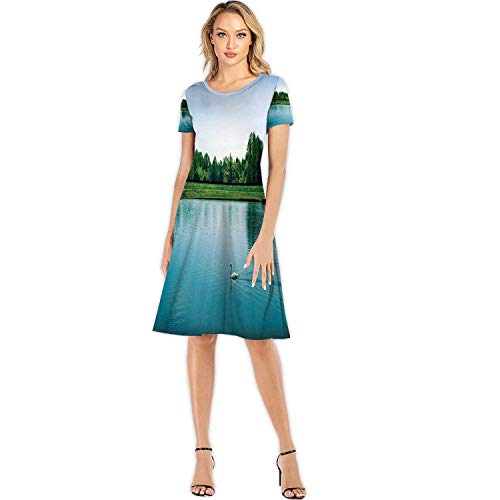 Big swan Swimming in Open Lake Effect Europe Fashion Elegant Lady Dress,107099 for Party,4XL